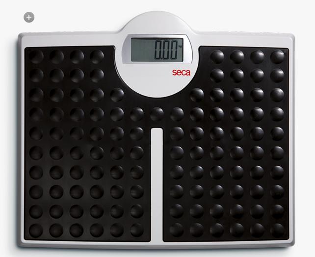Seca 813 Digital Bathroom Scale (non-medical)   Medical Supermarket