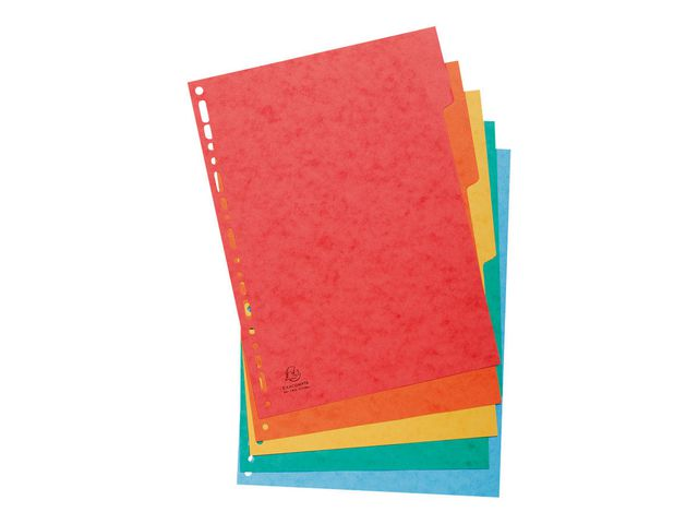 5 Part A4 Subject Dividers | Medical Supermarket